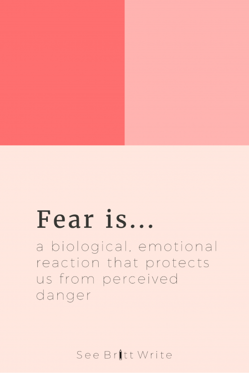 Most bosses are scared to death 97.2 percent of the time. Here are 99 absolutely normal business fears plus the resources you need to conquer each and every one of them.